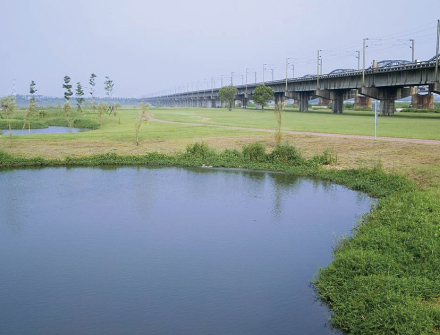 Constructed wetlands along Gaoping River