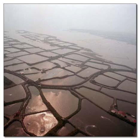 高屏溪出海口魚塭池構成幾何圖形_圖示