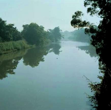 貓羅溪在頂寮附近,水流趨緩, 在靄霧薄暮籠罩下,景物層次分明,好似一幅水墨畫_圖示
