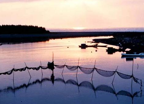 得子口溪河口面對著太平洋,景觀隨著潮汐而變化,是濱海公路上極佳的賞景點_圖示