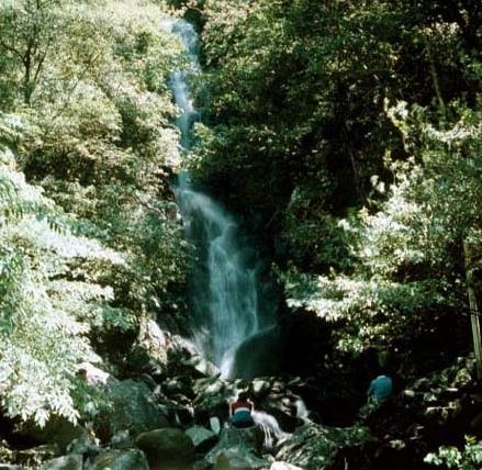 磺溪源頭之一的楓林瀑布_圖示