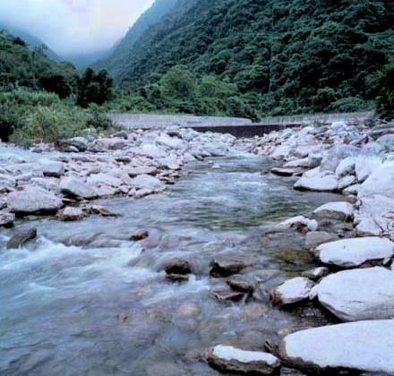 美崙溪上游水源段_圖示