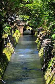 水量穩定充沛的二峰圳(圖片來源:屏東社區營造中心)